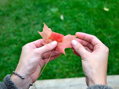 come fare un bouquet di foglie
