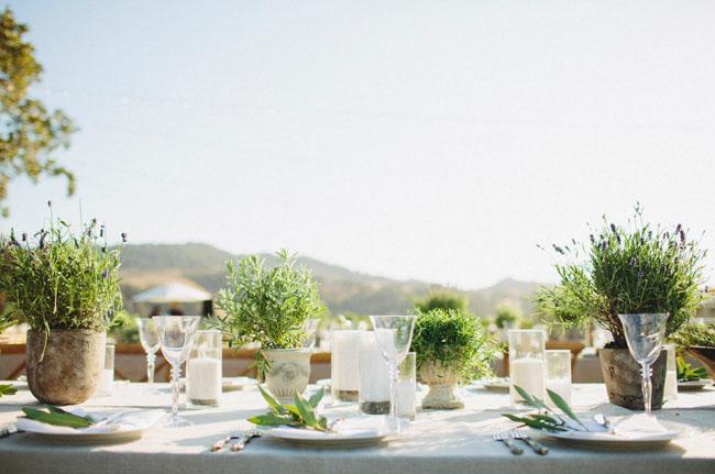 erbe aromatiche matrimonio