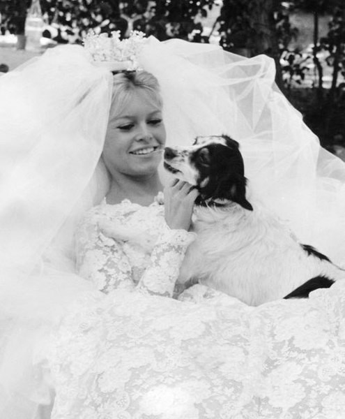 Brigitte-Bardot-sposa-con-cane