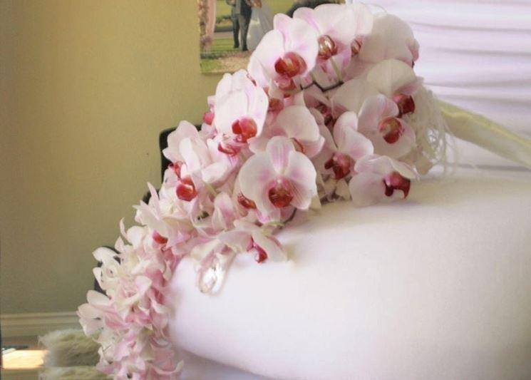 fioritura-orchidee_NG4